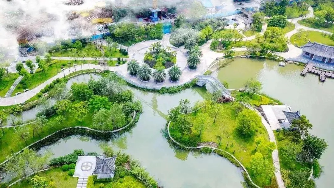 中山湿地公园